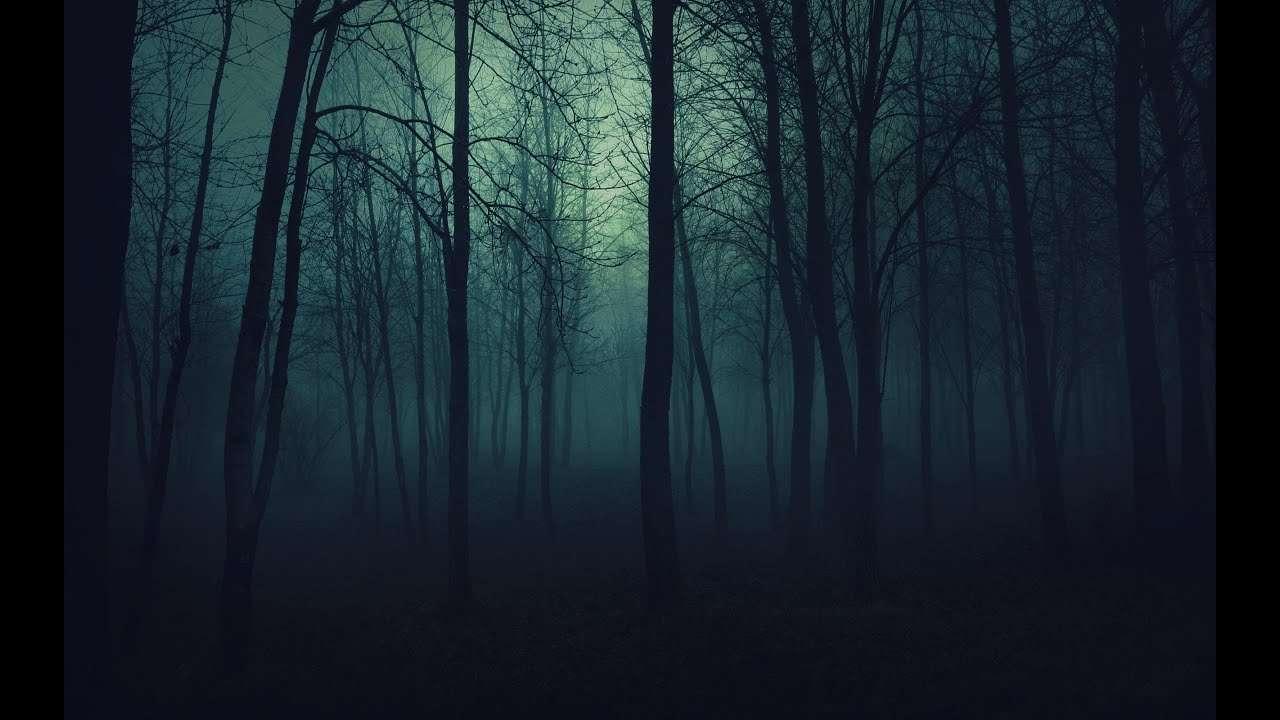 Il bosco di notte: quella passeggiata inquietante tra le noste paure